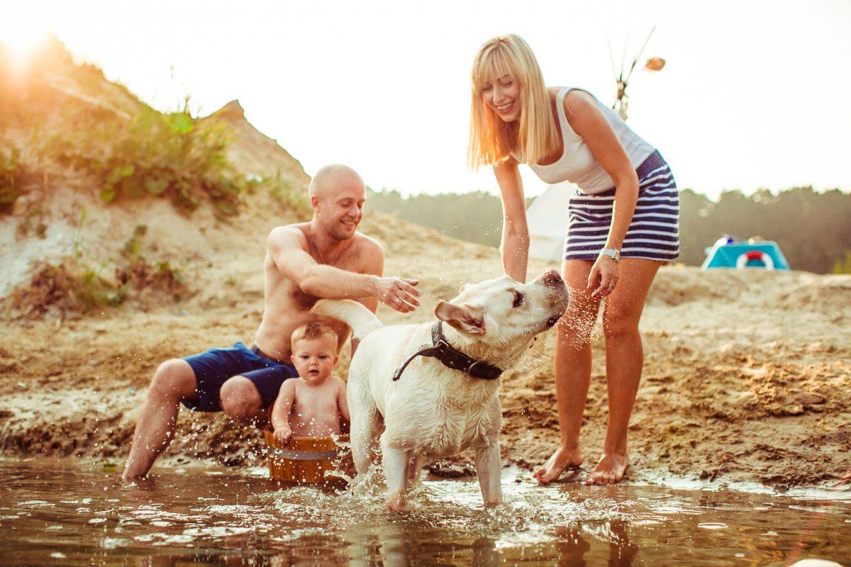 Rodzina z psem nad woda.