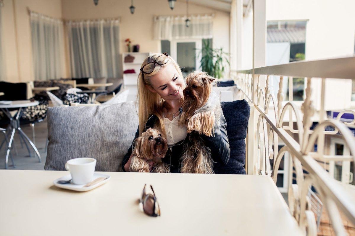 Kobieta trzyma małego psa na kolanach. Pies przy stole. Psia kawiarnia.