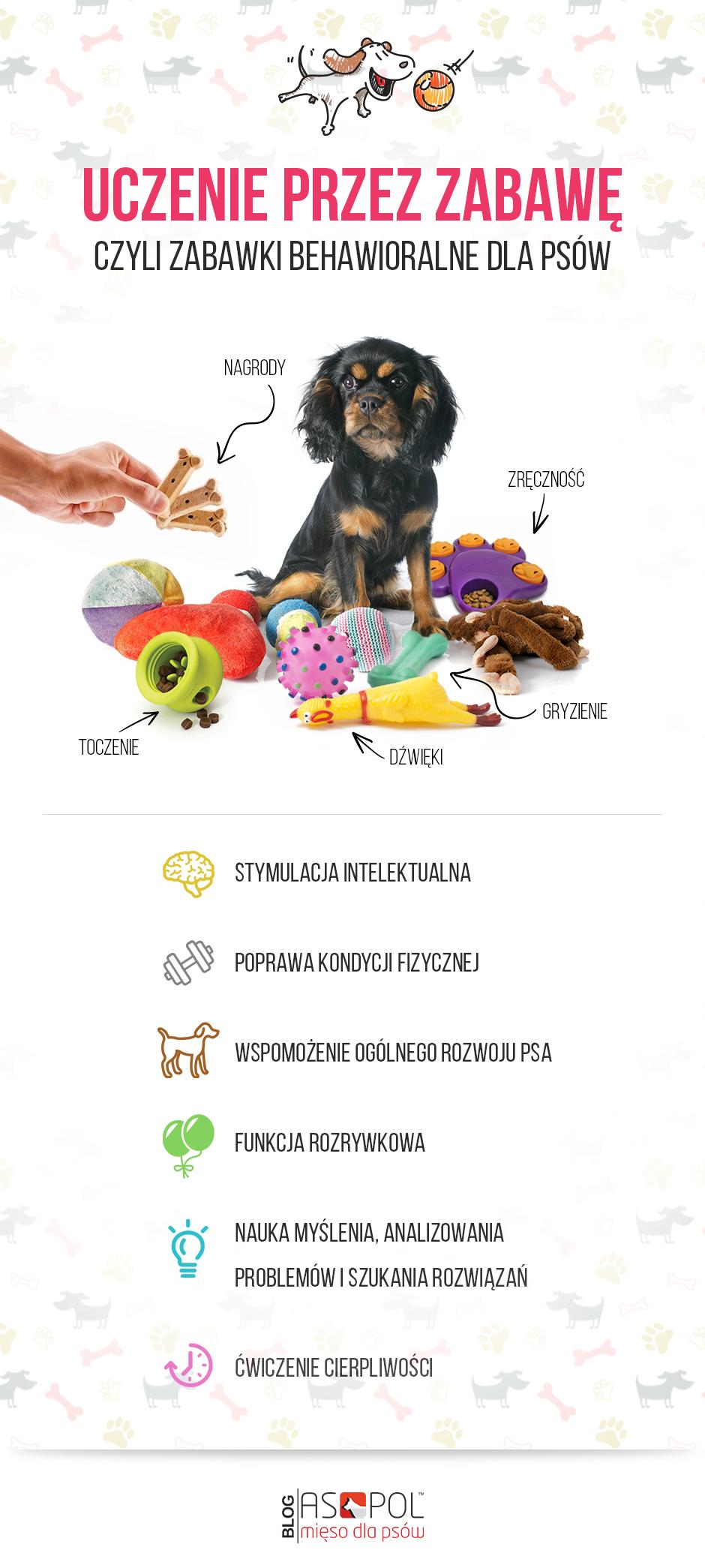Zabawki behawioralne infografika.